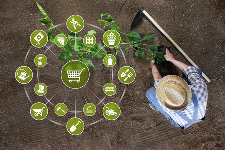 gardening equipment e-commerce concept, online shopping garden tools icons, man planting a plant on the ground in top view background