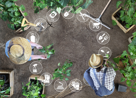 gardening equipment icons, man and woman together work in the vegetable garden, place a plant in the ground, top view from above with copy space