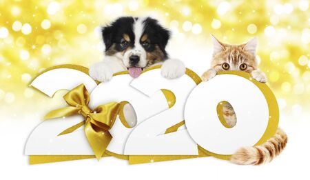 2020 happy new year number text, dog puppy and cat.