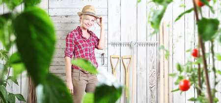 smiling woman in vegetable garden on white wooden shed background with gardening tools, cherry tomatoes plants in the foreground