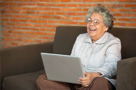 Happy senior woman seated on sofa in living room use laptop,Older generation using modern technology concept.