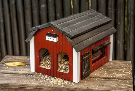 Birdhouse for our little friends for food