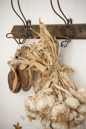 lifestile: colorful mood interior image and garlic