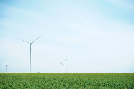 Beautiful spring greenery. Wind turbines in a green grass field, space for text.