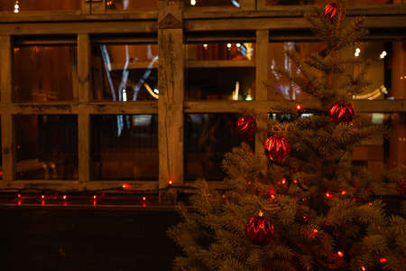 Christmas tree on the background of a wooden window, place for text.