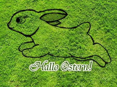 Hello Easter photo