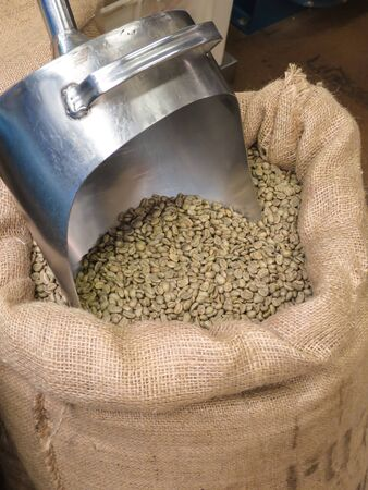 green coffee beans in a sack with a coffee spoon