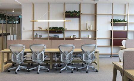 nature modern co working space office interior with white chair,white table with wall a concrete floor background
