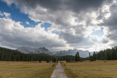 Small road landscape with pine forests in the foreground and the Durmitor mountain range in the background
