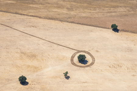Aerial image of farmer that had fun drawing a tracktor trace circle around a tree in a field in Italy Stok Fotoğraf