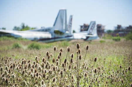 Nature taking over abandoned Fairchild airplanes of CATA Linea Aerea at the Moron Airport in Buenos Aires Stok Fotoğraf