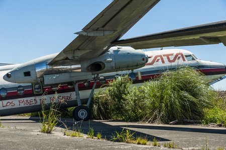 Nature taking over abandoned Fairchild airplanes of CATA Linea Aerea at the Moron Airport in Buenos Aires, underwing and motor Foto de archivo - 98877395
