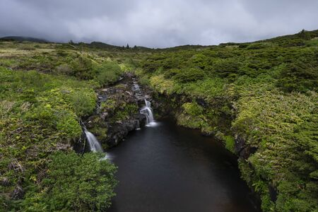 landscape with stream and small waterfalls on the top of Poco Ribeira do Ferreiro at Faja Grande and Fajazinha, Azores, Portugal