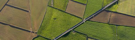 aerial views on the typical abstract countryside of the east of Terceira Island, one of the islands of the Acores (Azores) archipelago. Serra da Ribeirinha and The Miradouro da Serra do Cume offer great views on these abstract dairy cattle farming fields with stone walls, Portugal