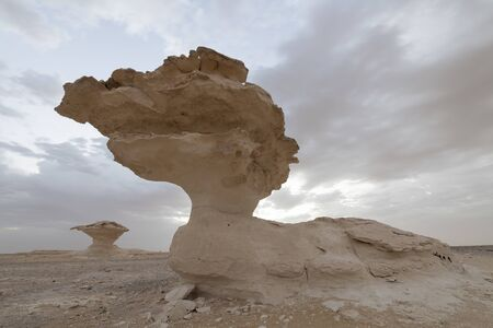 The Mushrooms of the White Desert National Park against a sky with fast moving clouds.