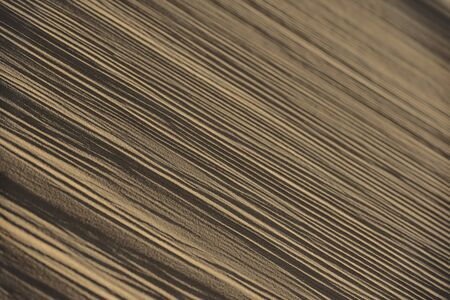 Abstract desert sand pattern shaped by low sunlight and wind formed ripples  Stok Fotoğraf