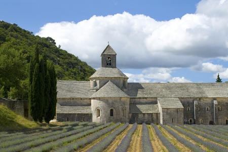 gordes: Abbey de Senanque, Gordes. Provence.