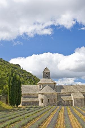 senanque: Abbey de Senanque, Provence. Gordes.