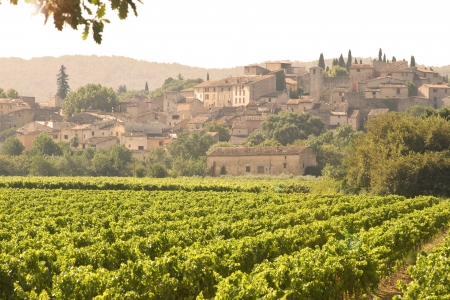French Village in sunset, with vineyard. Provence photo