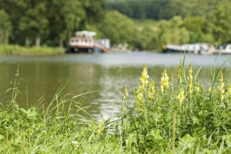 waterway: Canal Bourgogne, french waterway, riverbank. France. Stock Photo
