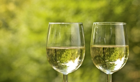 Wine glass, picnic  photo