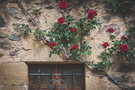 Facade of a mediterranean traditional house with a wooden latticed window and red climbing roses