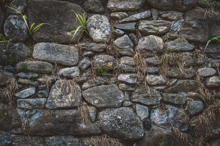 Old natural stone wall with green and dry vegetation growing among the rocks Stock fotó