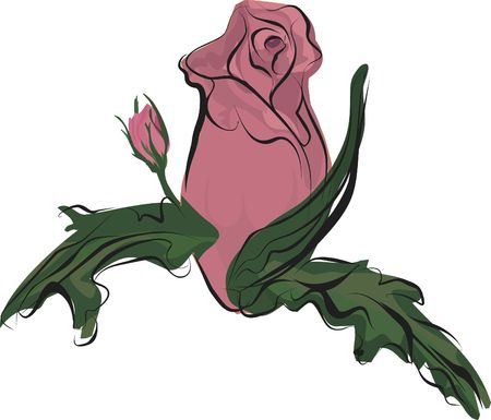 wildrose: Hand drawn Rose design element, file has no gradients.