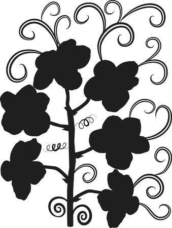 an element: Orchid design element.
