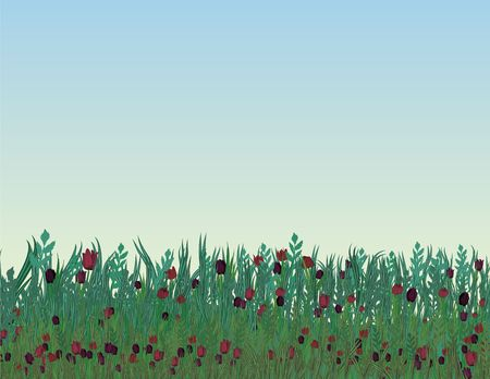 A field of tulips illustrated in a spring day.  Stock Photo