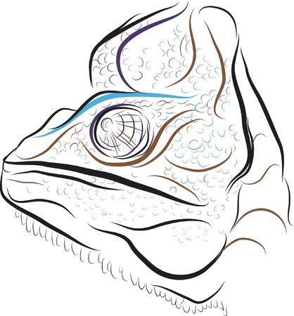 Hand getrokken illustratie van een leguaan. Bestand bevat geen hellingen Stockfoto