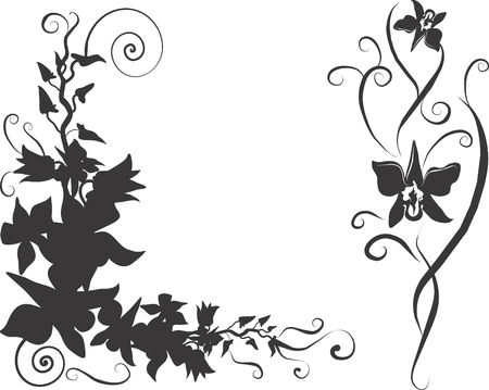 Illustration of Orchid design elements with leaves and swirls, illustration contains no gradients.