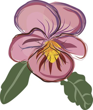 and has: Hand drawn Pansy floral still life, file has no gradients.  Stock Photo