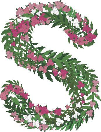 Illustratie van een kleurrijke roos hoofdletter, zonder hellingen.