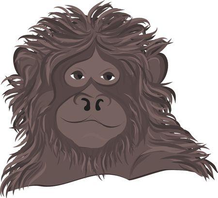 Hand drawn stylized portrait of a monkey. No gradients.