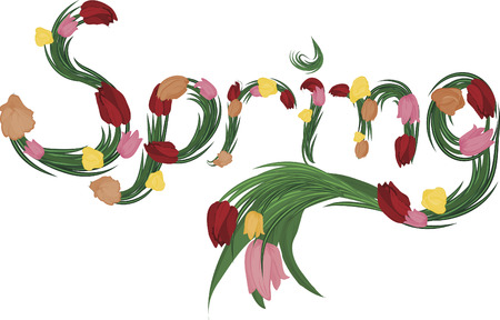 Illustration of colorful tulips Spring text, with no gradients.
