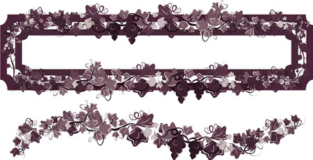 wine growing: Illustration of grapes and ivy in a frame design element.  File contains no gradients.  Illustration
