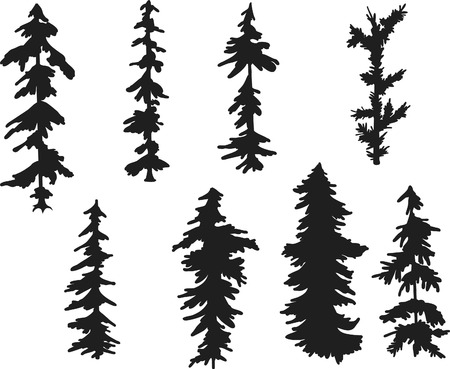 Pine tree freehand illustrated design elements.
