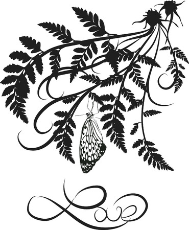 Fern leaves illustrated design element with butterflie.