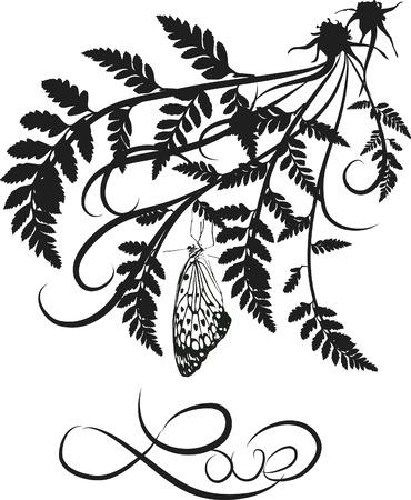 ferns: Fern hojas ilustradas con el dise�o elemento butterflie.