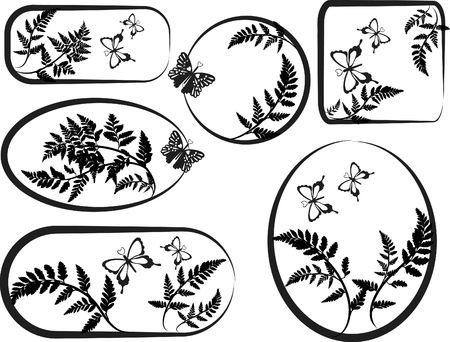 fern fiddlehead: Fern leaves illustrated in a grunge frame elements with butterflies.