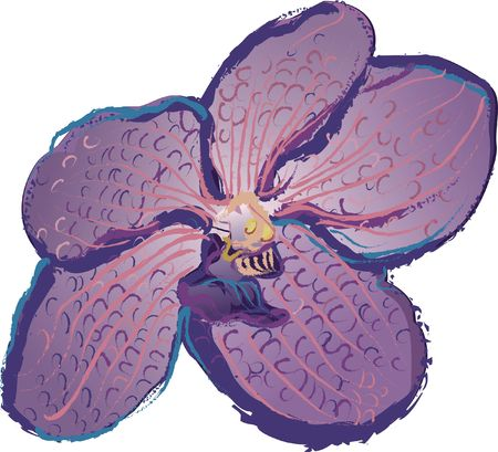 Hand drawn grunge textured Orchid. Stock Photo