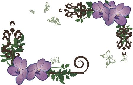 Drawing of Orchids in frame design elements with butterflies.