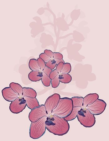 Hand drawn stylized spear of Orchids. Stock Photo