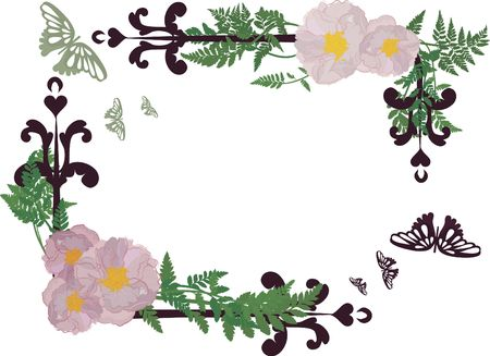 still life flowers: Drawing of rose frame elements with butterflies.