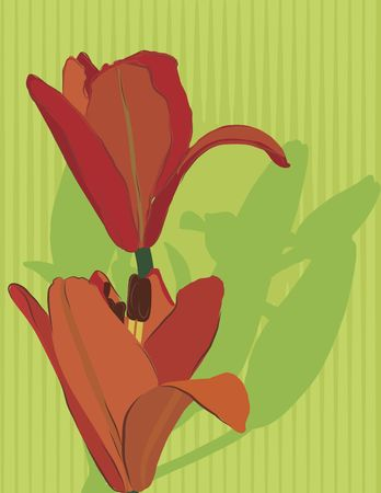 Hand drawn tiger lily with retro background. No gradients. Stock Photo - 3173380