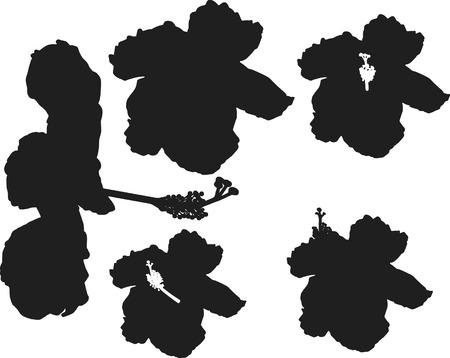 ハイビスカスの花のシルエットのセットです。1 つの色。