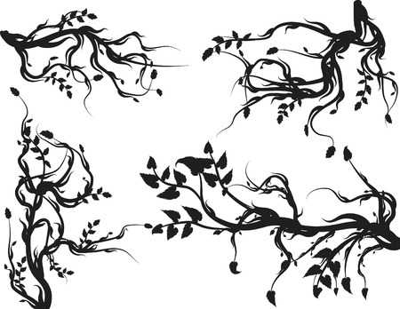 Overgrown wild roots and leaves design elements. Vector