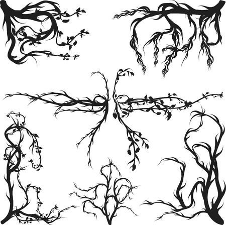 Overgrown wild roots and leaves design elements.