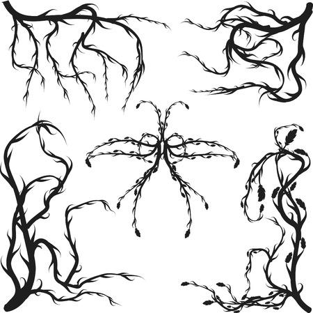 자란 야생 뿌리와 나뭇잎 디자인 요소. 일러스트